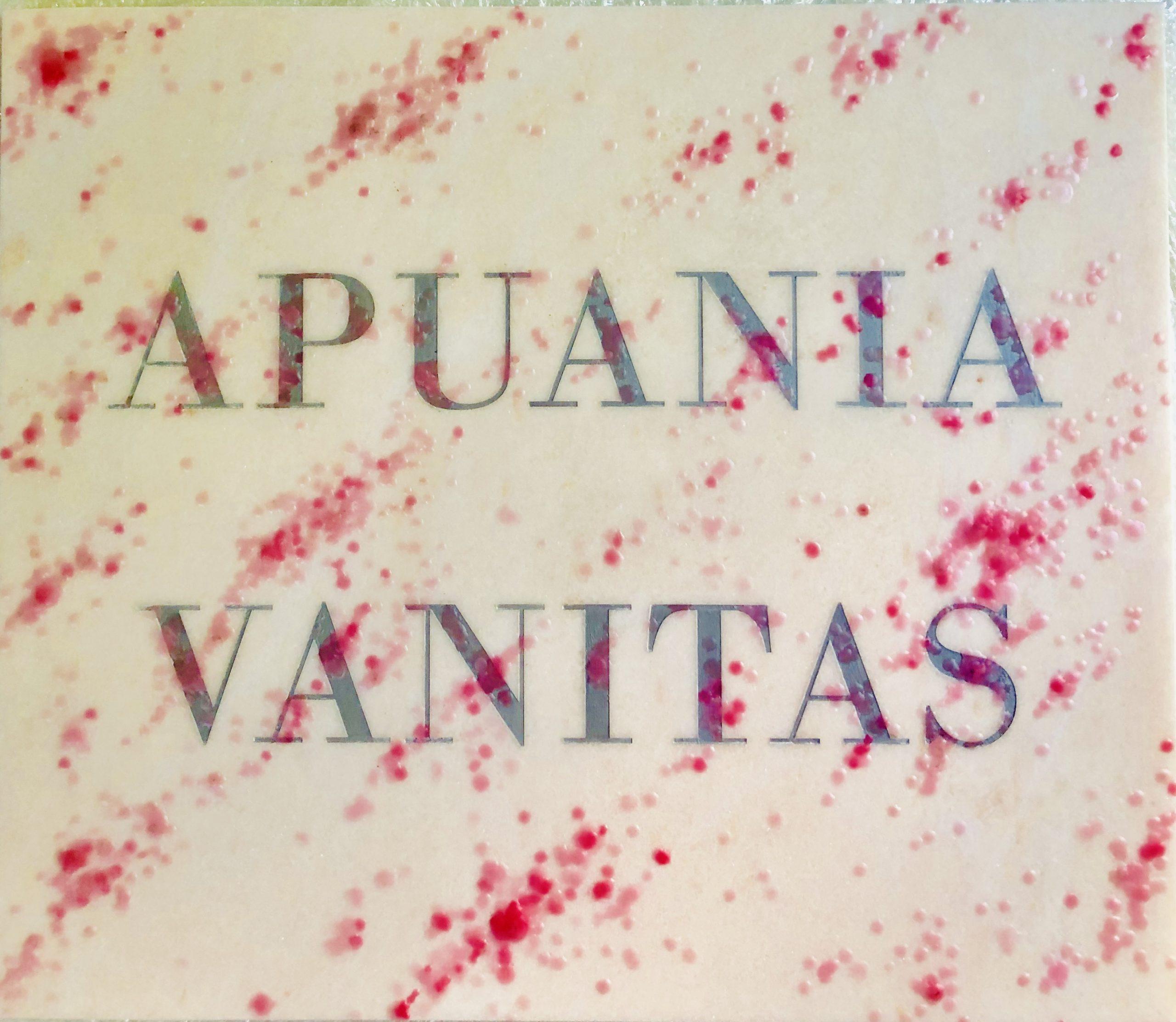 Michele Chiossi APUANIA VANITAS, 2019  marmo rosa Portogallo, incisione in silver, cera, pigmenti colorati  scultura targa omaggio Salvo trompe l'oeil